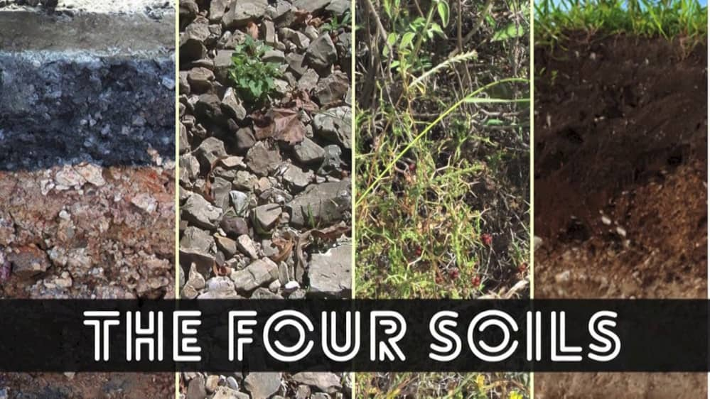 The Parable of the Soil (aka Parable of the Sower)